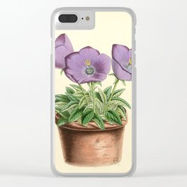 Andrews, James (1801-1876) - The Floral Magazine 1869 - Campanula Turbinata Clear iPhone Case