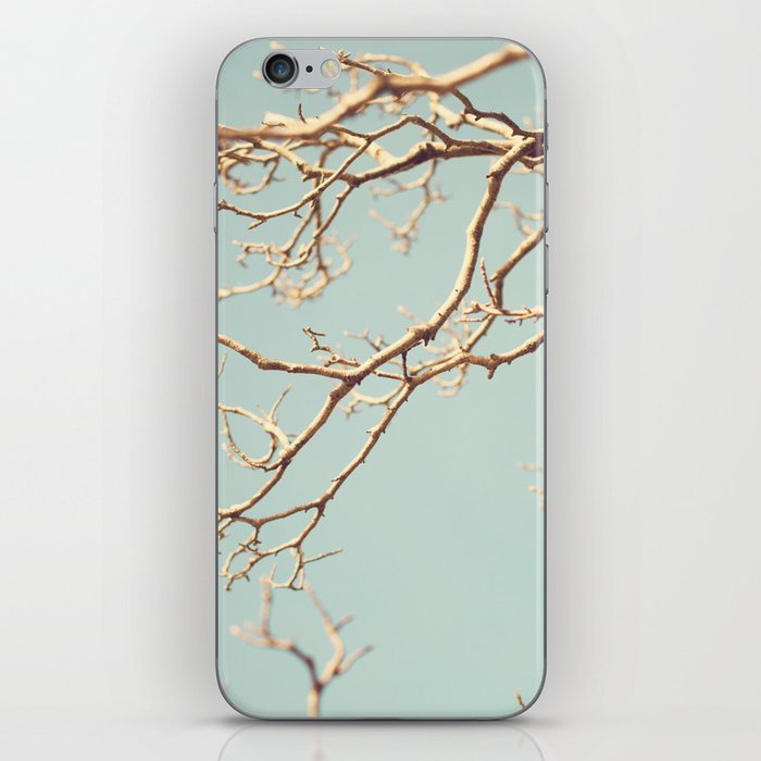 Pale Blue Winter (Tree branches on a retro pale blue sky) iPhone Skin