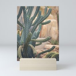 Cactus Jungle II Mini Art Print
