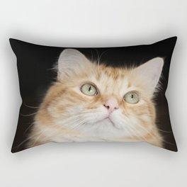 Hobbes glamor shot Rectangular Pillow