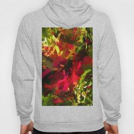 Rainbow Flower Rhapsody Red Green Hoody