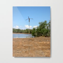 Dragonfly - Shaw River Metal Print