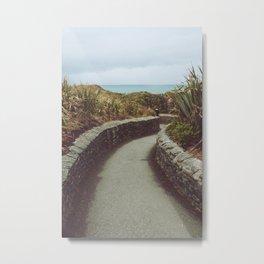 Pathway to Punakaiki Rocks Metal Print