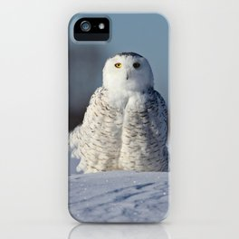 Miss Snowy Owl iPhone Case