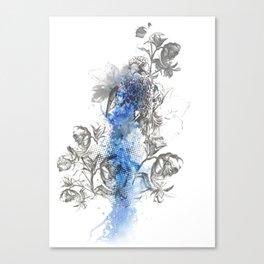Hawk Illustration Canvas Print