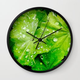 Lady's Mantle Flower Wall Clock