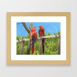 Scarlet Macaw Parrots Perching Framed Art Print
