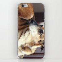 copper iPhone & iPod Skins featuring Copper by Irène Sneddon