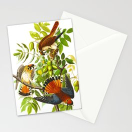 Sparrow Vintage Scientific Bird & Botanical Illustration Stationery Cards