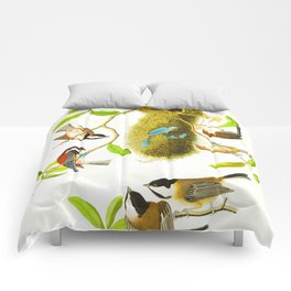 Black Capped Titmouse Comforters