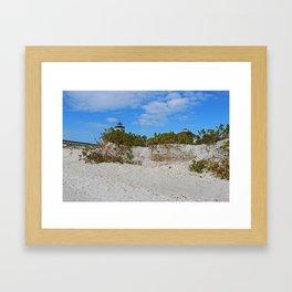 Dunes on Gasparilla II Framed Art Print