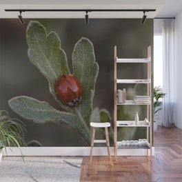 The Lady Beetle With No Spots Wall Mural