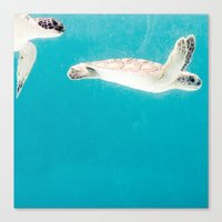 turtles Canvas Prints featuring Turtles by Loaded Light Photography