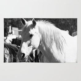 White Horse-B&W Rug