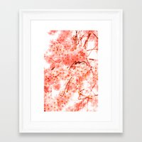 cherry blossoms Framed Art Prints featuring Cherry Blossoms by 2sweet4words Designs