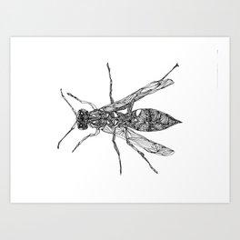 Red Wasp Art Print