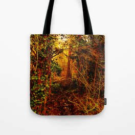 Winter forest stream Tote Bag