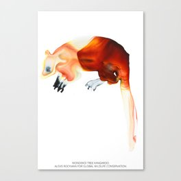 Wondiwoi Tree Kangaroo Canvas Print