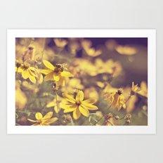 Summer  Bee Art Print