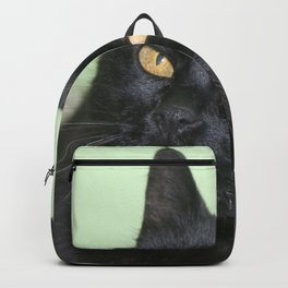 Relaxed Black Cat Portrait  Backpack