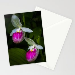 Lady's Slipper Pair Stationery Cards