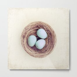 Birds Nest Photography, Robins Egg Nest, Spring Photography, Three Babies Metal Print