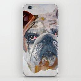 American Bulldog Portrait: Yale Mascot iPhone Skin
