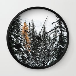 353. Autumn Pine in Snow Forest, Banff, Canada Wall Clock