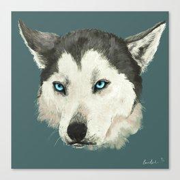Husky Portrait Canvas Print
