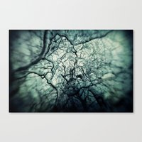 chaos Canvas Prints featuring Chaos by Sharon Johnstone