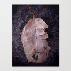 Torn Love Canvas Print