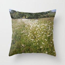 Path of Daisies Throw Pillow