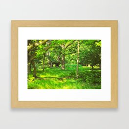 Green and Beautiful Framed Art Print