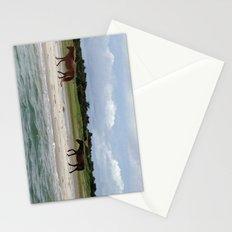 Wild Horses, Shackleford Banks, NC Stationery Cards