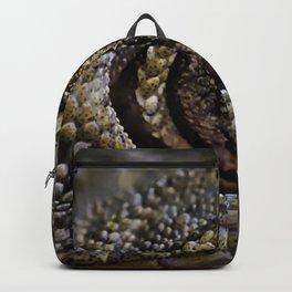 Lizard Eye Backpack