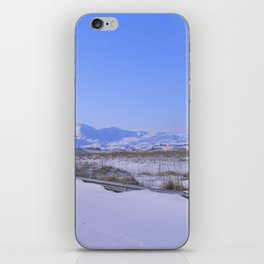 Airliner35 iPhone Skin