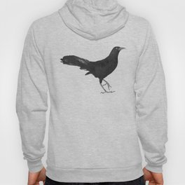 Great-tailed grackle Hoody