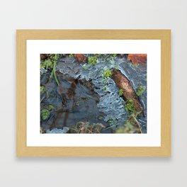 Ice 1 Framed Art Print