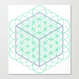 Sacred Geometry - glowing energy lines - cube and flowers Canvas Print