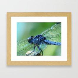Flying on Fairy Wings Framed Art Print