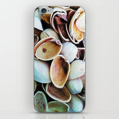 Nut Shells  iPhone & iPod Skin