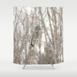 Great gray on a snowy day Shower Curtain