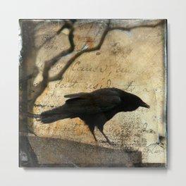 Crow Caws Metal Print