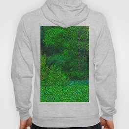 Landscape with hidden rabbits ... Hoody