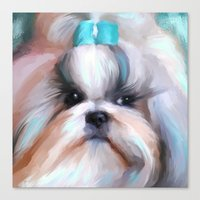 shih tzu Canvas Prints featuring Little Boy Shih Tzu by Jai Johnson