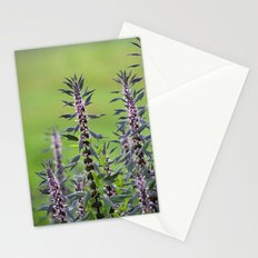 Motherwort - Leonurus cardiaca 4018 Stationery Cards