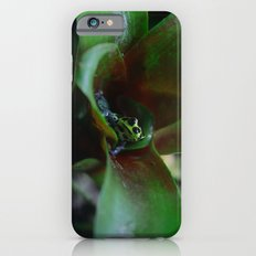 Poison dart Frog Ranitomeya Imitator  iPhone 6s Slim Case
