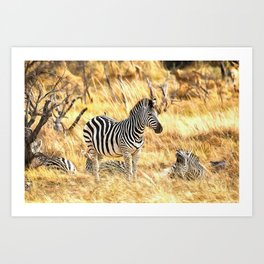 Zebras at Peace Art Print