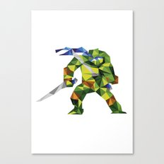 Katana Turtle Canvas Print
