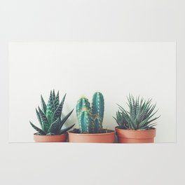 Potted Plants Rug